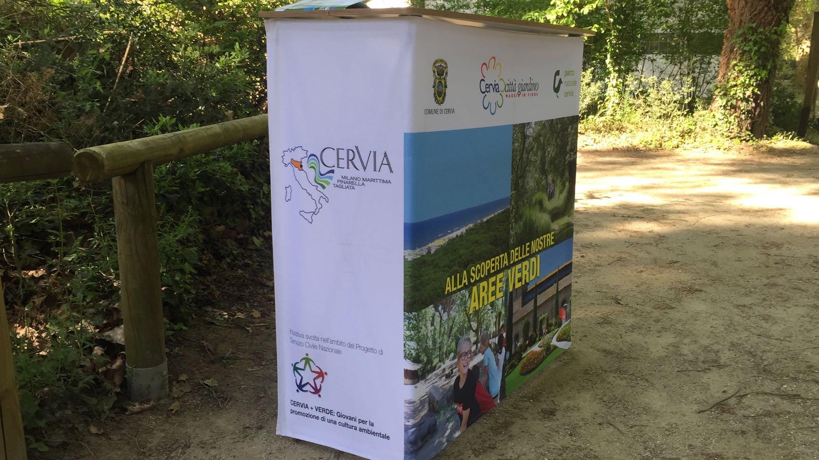 Ufficio Verde Cervia : Cafenoir decolte scarpe in vernice verde a cervia kijiji