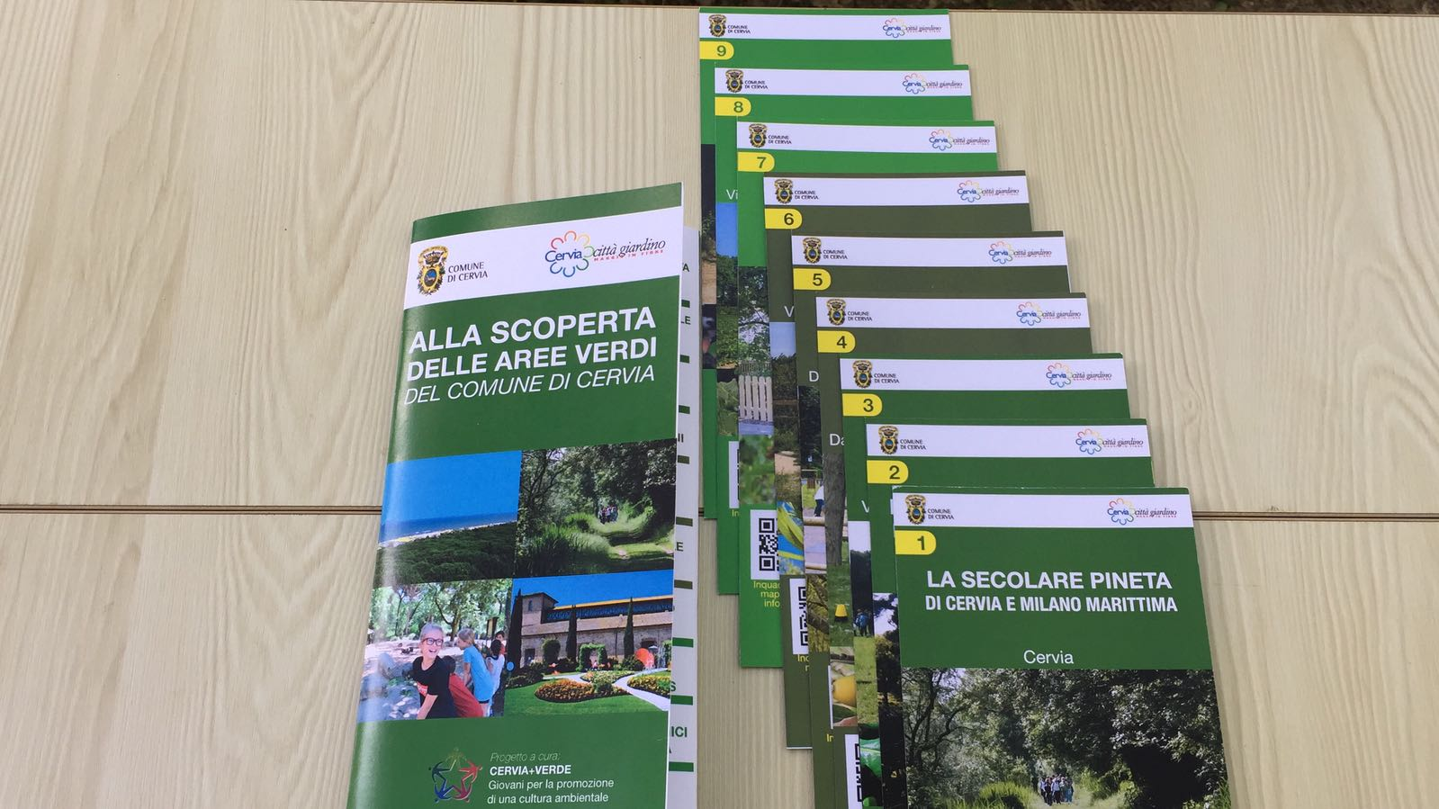 Ufficio Verde Cervia : Rustici casali e case di corte in vendita a cervia ra